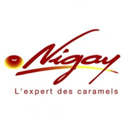 nigay_logo