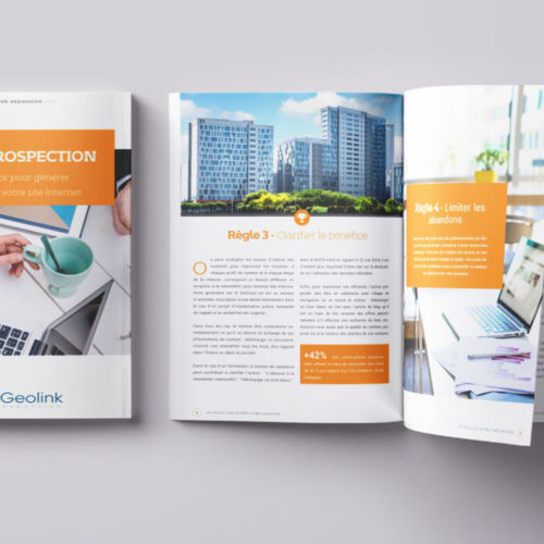 Livres blanc optimiser votre site Internet