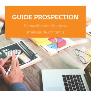 Livre blanc - Stratégie de contenus